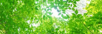 地球温暖化対策/環境対策